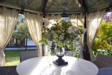 Luxurious Garden Villa Den Haag